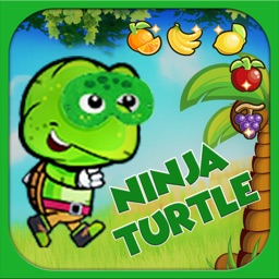 Smart Turtle Fruit Runing Game