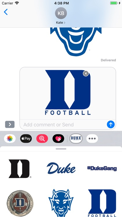 Duke Stickers