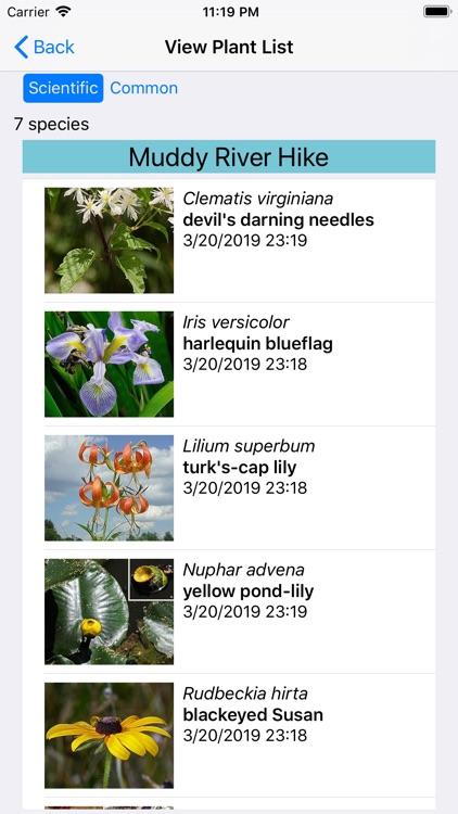 New England Wildflowers screenshot-7