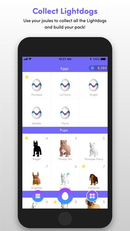 Lightdogs: Unplug & Focus