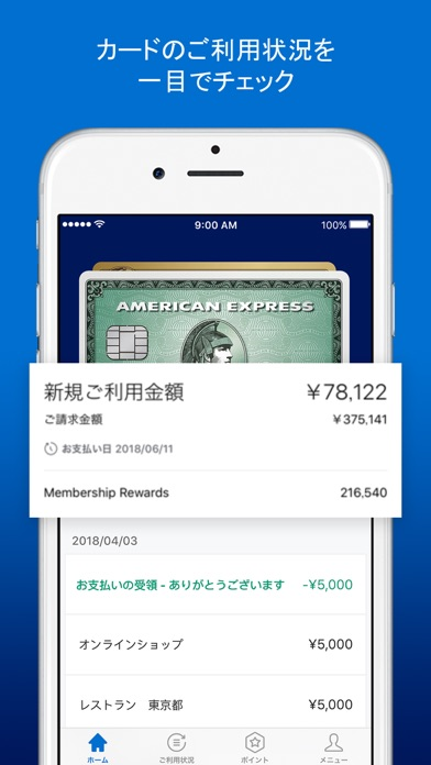 Amex Japan ScreenShot0