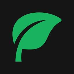 Pistuu: Plant-Based Meal Plans