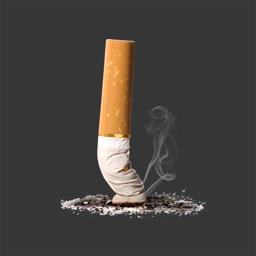 Quit Smoking --~