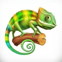 Chameleon Stickers