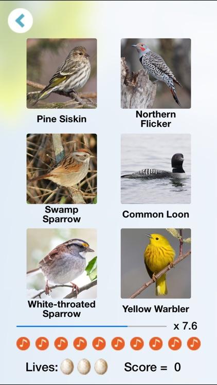 Chirp! Bird Songs Canada screenshot-3
