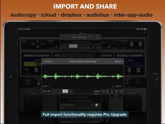 Quantiloop - Live Looper