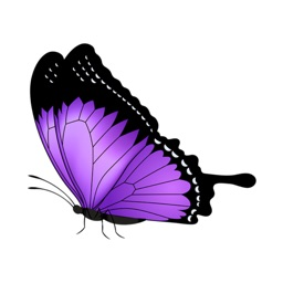 Butterflies Pack Stickers