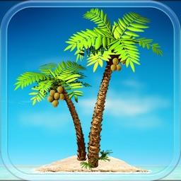 Paradise Beach: resorts tycoon sim strategy