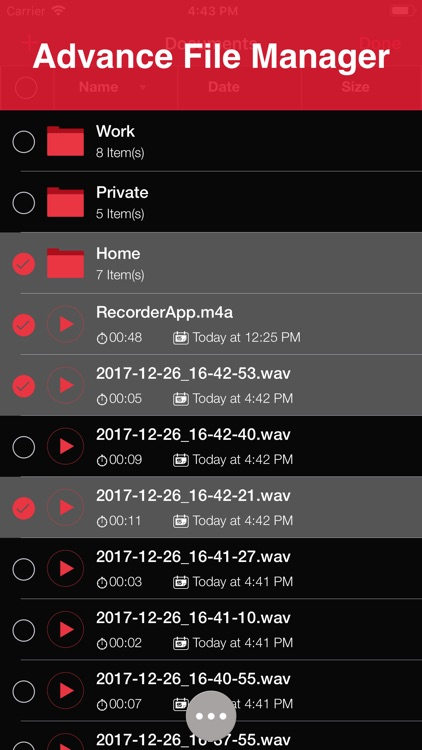 Recorder Lite: Voice Recording screenshot-3