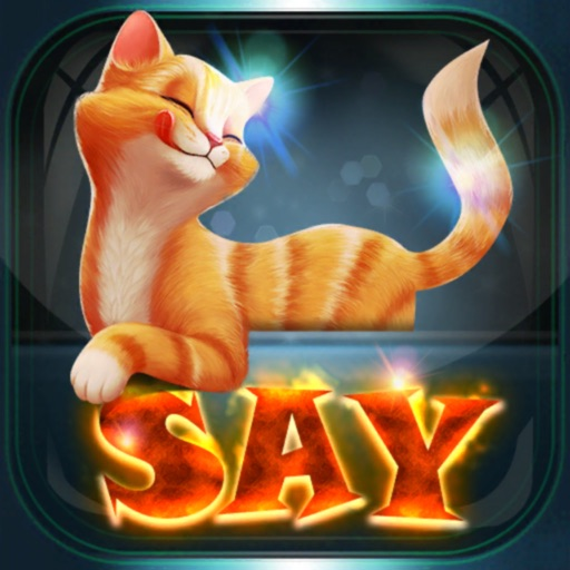 Say - Meo Puzzle