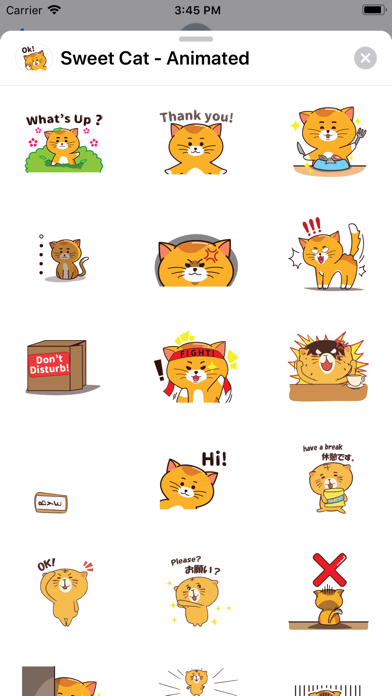 Sweet Cat - Animated screenshot 1