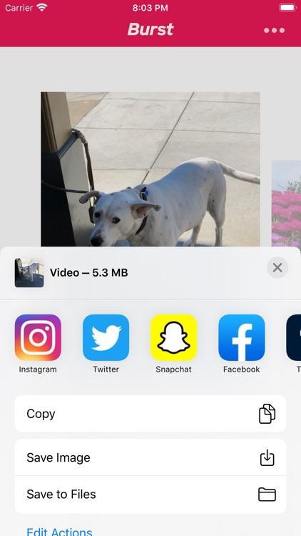 The Burst App