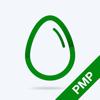 PMP Practice Test Prep