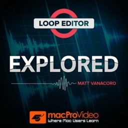 Explore Course For Loop Editor