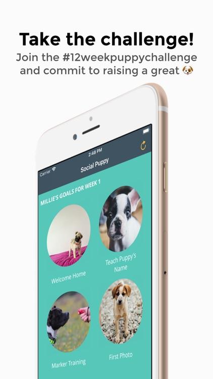 Social Puppy: Dog Training App screenshot-4