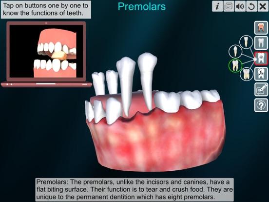 Incredible Human Teeth screenshot 11
