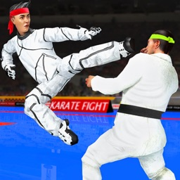 Real Karate Fight Punch 2020