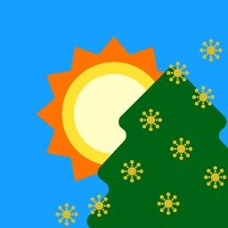 週間天気予報 Sunny