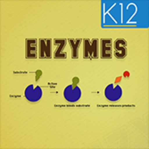 Enzymes and its Properties