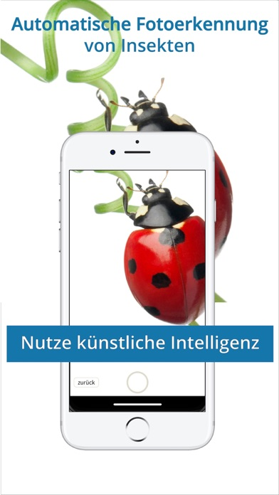 messages.download NABU - Insektenwelt software
