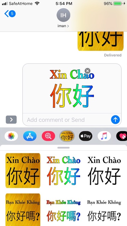 Chinese Vietnames