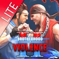 Codes for Brotherhood of Violence Lite Hack