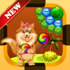 Activities of Doggy Bubble Shooter Rescue