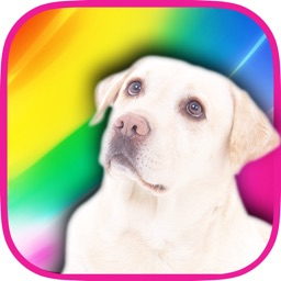 Color Zoo - Learn colors