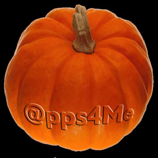 Pumpkin Weight Calculator