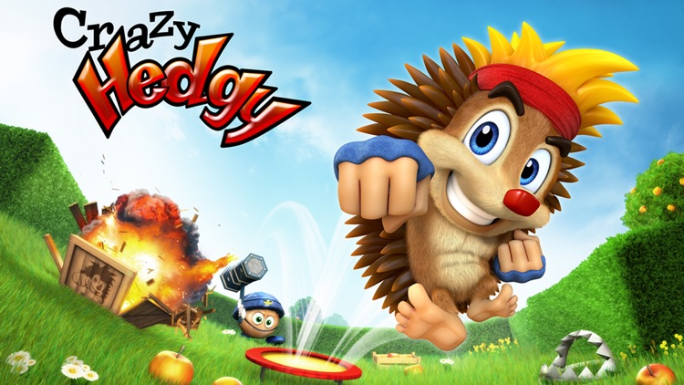 Crazy Hedgy - 3D Platformer screenshot-4