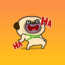 Cool Dog Animated Stickers