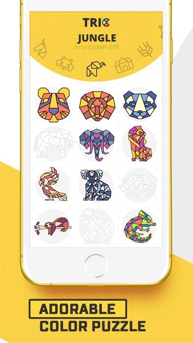 Trio - Polygon Coloring Puzzle screenshot 3