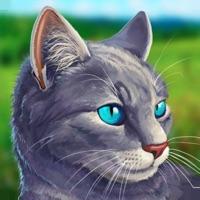 Codes for Cat Simulator - Animal Life Hack