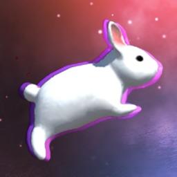 Rabbit Jump 3D fun action game