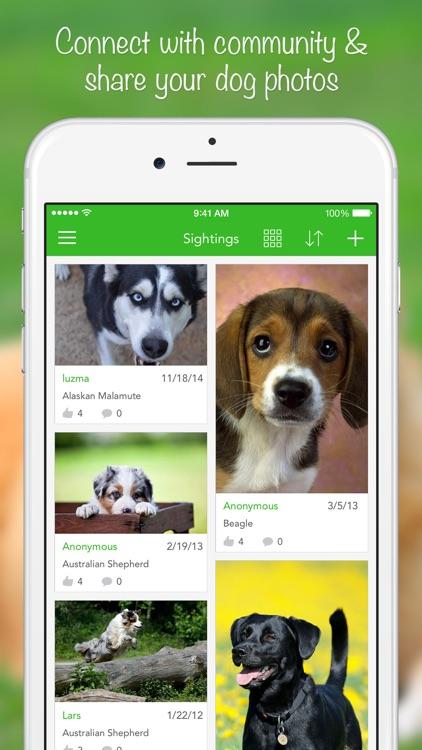 iKnow Dogs 2 PRO screenshot-4
