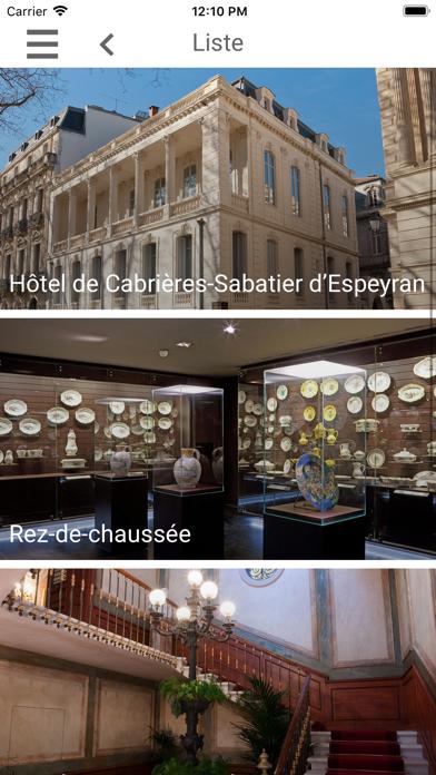 Hôtel Sabatier d'Espeyran screenshot 3