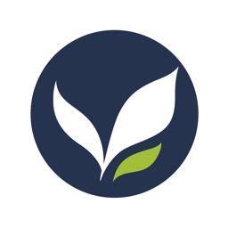 Nutrición Artificial en UCI