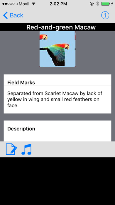 Panama Birds Field Guide Basic screenshot three