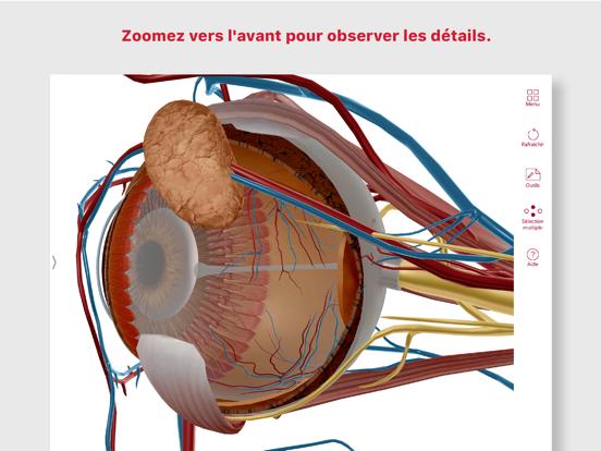 Screenshot #6 pour Anatomie & Physiologie