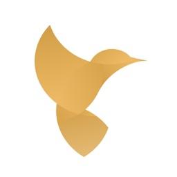 蜂鸟智汇-外汇原油投资互动社区