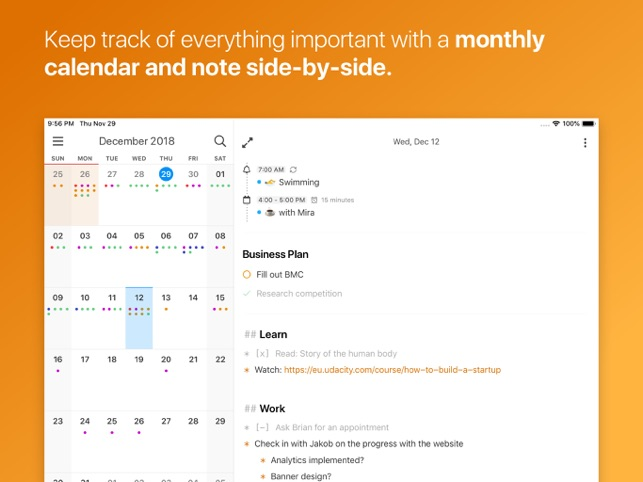 NotePlan - Work Planner Screenshot