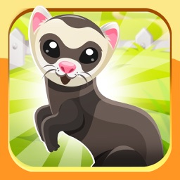 Ferret Pet Emojis Stickers App