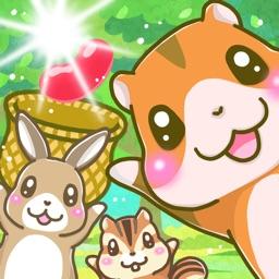 Let's harvest the beans!