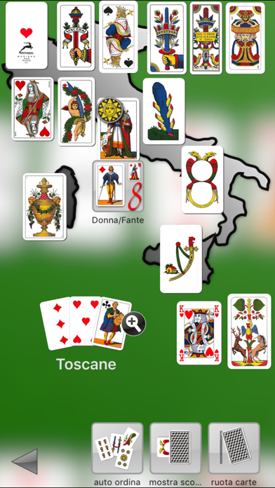 iScopa LE screenshot three