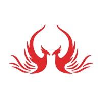 Codes for Phoenix Hack