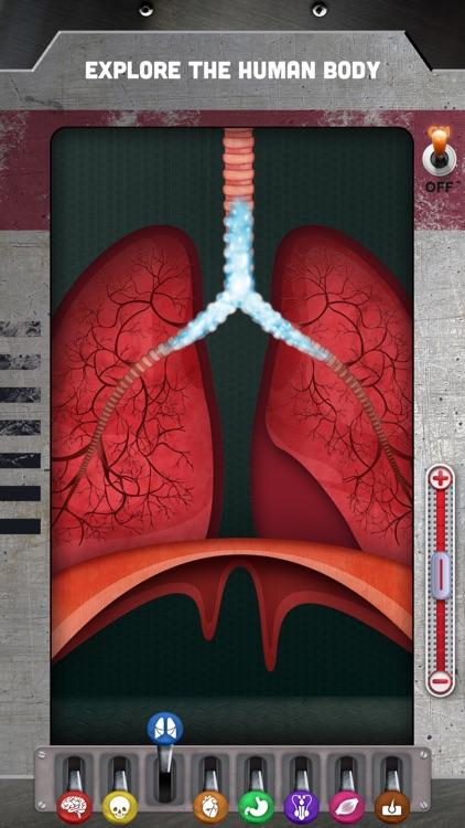 How does The Human Body Work? screenshot-0