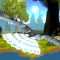 Codes for Forest Flyers Hack
