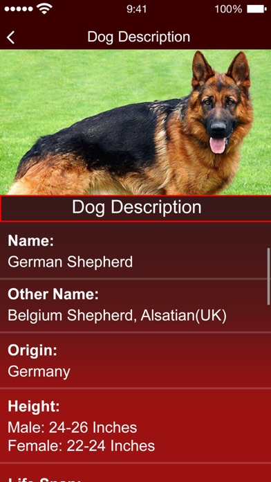 Dog Breed:Scanner & Identifier screenshot 3
