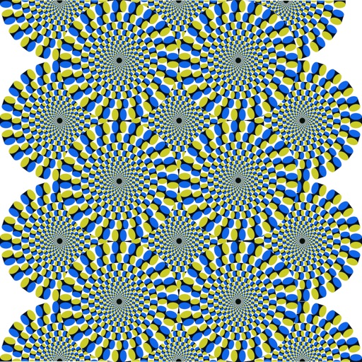 Optical Illusions Catalog