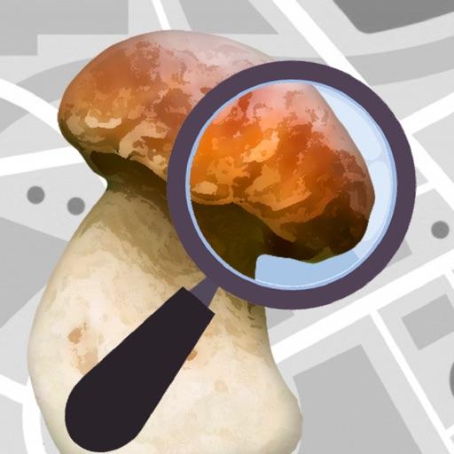 Mushroom Identificator